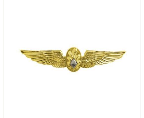 Vanguard NAVY BADGE: FLIGHT SURGEON - MINIATURE, MIRROR FINISH