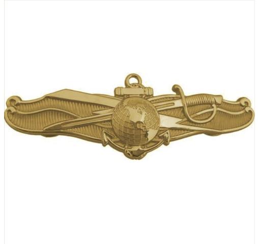 Vanguard NAVY BADGE: OFFICER INFORMATION DOMINANCE WARFARE - MINIATURE, MIRROR FINISH
