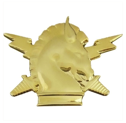 Vanguard ARMY OFFICER BRANCH OF SERVICE COLLAR DEVICE: PSYCHOLOGICAL OPERATIONS - 22K GOLD PLATED