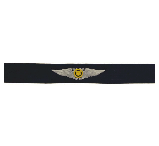 Vanguard COAST GUARD AUXILIARY EMBROIDERED BADGE: AVIATOR WINGS - RIPSTOP FABRIC