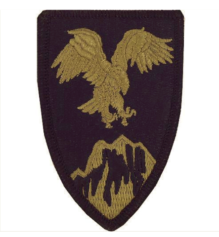 Vanguard ARMY PATCH: U.S. ARMY ELEMENT COMBINED FORCES COMMAND AFGHANISTAN - OCP