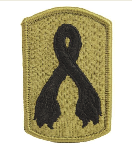 Vanguard ARMY PATCH: 196TH INFANTRY BRIGADE - EMBROIDERED ON OCP