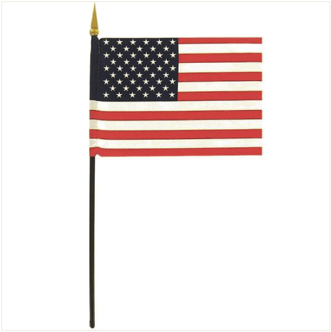Vanguard FLAG: AMERICAN FLAG - 4 BY 6 INCHES