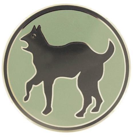 Vanguard ARMY COMBAT SERVICE IDENTIFICATION BADGE 81ST REGIONAL SUPPORT COMMAND