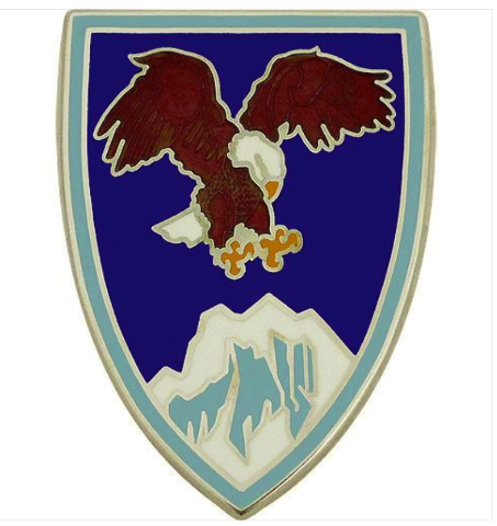 Vanguard US ARMY ELEMENT COMBINED FORCES COMMAND - AFGHANISTAN