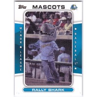 RALLY SHARK 2013 Topps Pro Debut Myrtle Beach Pelicans Mascot Patch Card