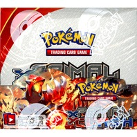 Pokemon TCG XY Primal Clash Sealed Booster Box (English)