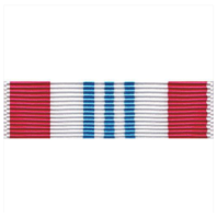 Vanguard US Defense Meritorious Service Ribbon Unit (DMSM)