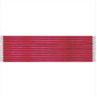 Vanguard Legion Of Merit Ribbon Unit (LOM)