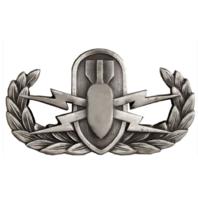Vanguard Navy Enlisted Explosive Ordnance Disposal Designation Pin