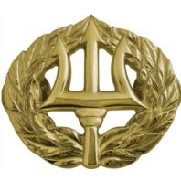 Vanguard Navy Badge: Command Ashore - Regulation Size Pin