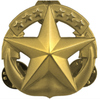 Vanguard Navy Regulation Size Command At Sea Designation Pin