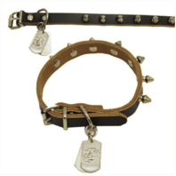 Vanguard PET INSIGNIA - SMALL SPIKED LEATHER COLLAR WITH EGA TAG