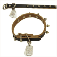 Vanguard PET INSIGNIA - MEDIUM SPIKED LEATHER COLLAR WITH EGA TAG