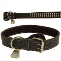 Vanguard PET INSIGNIA - XXL SPIKED LEATHER COLLAR WITH EGA TAG