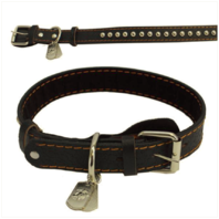 Vanguard PET INSIGNIA - XL SPIKED LEATHER COLLAR WITH EGA TAG