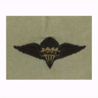 Vanguard ARMY EMBROIDERED BADGE: PARARIGGER EMBROIDERED WITH BLACK THREAD ON ABU