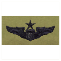 Vanguard AIR FORCE EMBROIDERED BADGE: PILOT: SENIOR - ABU