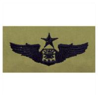 Vanguard AIR FORCE EMBROIDERED BADGE: NAVIGATOR: SENIOR - ABU