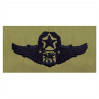 Vanguard AIR FORCE EMBROIDERED BADGE: NAVIGATOR: MASTER - ABU