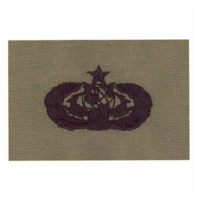Vanguard AIR FORCE EMBROIDERED BADGE: CYBERSPACE SUPPORT: SENIOR