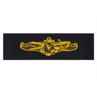 Vanguard NAVY EMBROIDERED BADGE: INFORMATION DOMINANCE WARFARE OFFICER - EMBROIDERED ON COVERALL