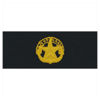 Vanguard NAVY EMBROIDERED BADGE: COMMAND AT SEA - EMBROIDERED ON COVERALL