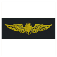 Vanguard NAVY EMBROIDERED BADGE: FLIGHT NURSE - EMBROIDERED ON COVERALL