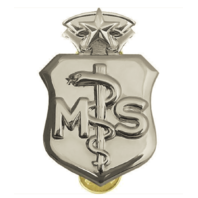 Vanguard AIR FORCE BADGE: MEDICAL SERVICE: CHIEF