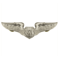 Vanguard AIR FORCE BADGE: OFFICER AIRCREW - REGULATION SIZE