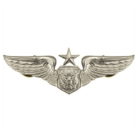 Vanguard AIR FORCE BADGE: OFFICER AIRCREW: SENIOR - REGULATION SIZE