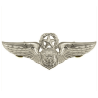 Vanguard AIR FORCE BADGE: OFFICER AIRCREW: MASTER - REGULATION SIZE
