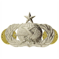 Vanguard AIR FORCE BADGE: SUPPLY FUELS: SENIOR - REGULATION SIZE