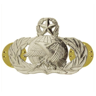 Vanguard AIR FORCE BADGE: SUPPLY FUELS: MASTER - REGULATION SIZE