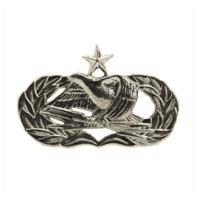 Vanguard AIR FORCE BADGE: GROUND RADAR AIRFIELD SYSTEMS SENIOR