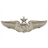 Vanguard AIR FORCE BADGE: ASTRONAUT: SENIOR