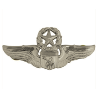 Vanguard AIR FORCE BADGE: ASTRONAUT: MASTER