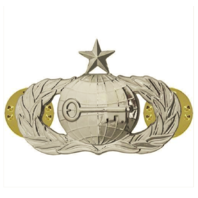 Vanguard AIR FORCE BADGE: INTELLIGENCE: SENIOR - REGULATION SIZE