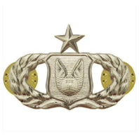Vanguard AIR FORCE BADGE: OPERATIONS SUPPORT: SENIOR - REGULATION SIZE
