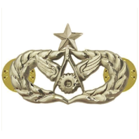 Vanguard AIR FORCE BADGE: CIVIL ENGINEER: SENIOR - REGULATION SIZE