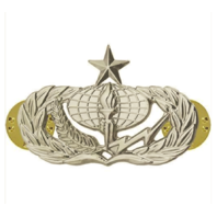 Vanguard AIR FORCE BADGE: SERVICES: SENIOR - REGULATION SIZE