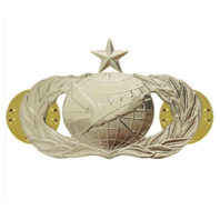 Vanguard AIR FORCE BADGE: PUBLIC AFFAIRS: SENIOR - REGULATION SIZE