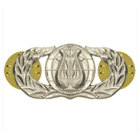 Vanguard AIR FORCE BADGE: BAND - REGULATION SIZE