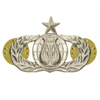 Vanguard AIR FORCE BADGE: BAND: SENIOR - REGULATION SIZE