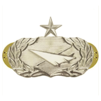 Vanguard AIR FORCE BADGE: HISTORIAN: SENIOR - REGULATION SIZE