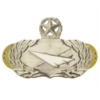 Vanguard AIR FORCE BADGE: HISTORIAN: MASTER - REGULATION SIZE