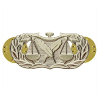 Vanguard AIR FORCE BADGE: PARALEGAL - REGULATION SIZE