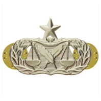 Vanguard AIR FORCE BADGE: PARALEGAL: SENIOR - REGULATION SIZE