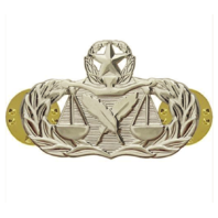 Vanguard AIR FORCE BADGE: PARALEGAL: MASTER - REGULATION SIZE