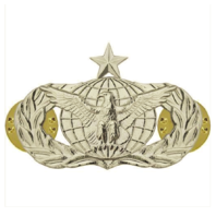 Vanguard AIR FORCE BADGE: FORCE PROTECTION: SENIOR - REGULATION SIZE
